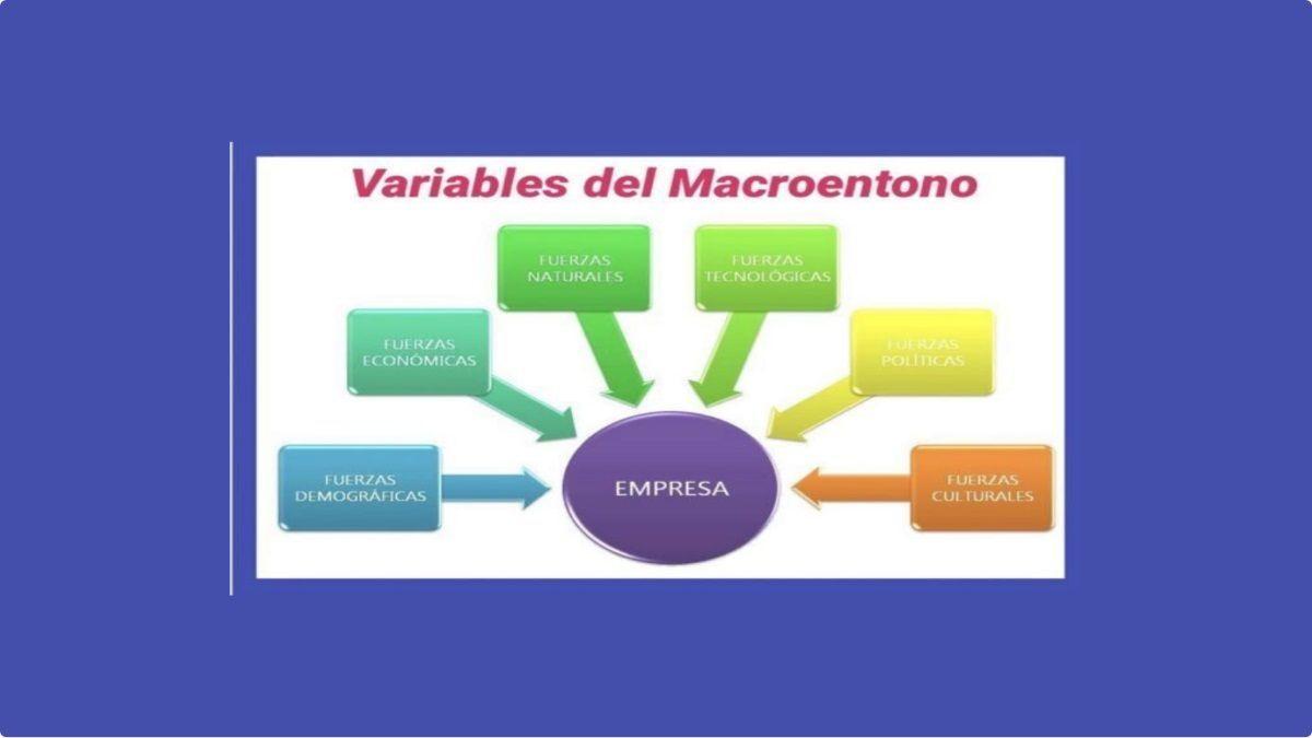 el macroentorno que influyen en la empresa