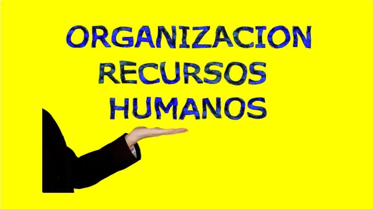 contratos y organización de los recursos humanos