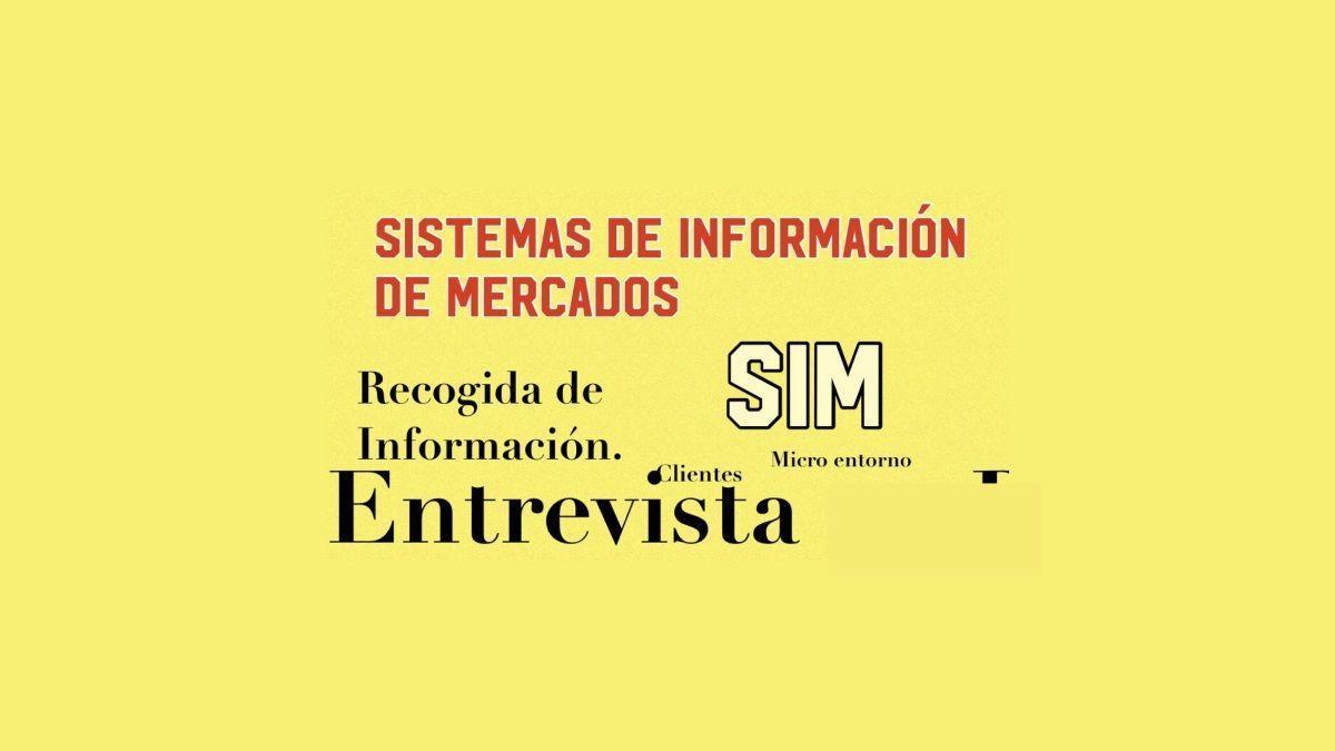SIM definición y funciones de los sistemas